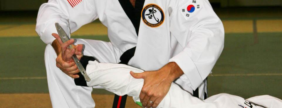 Group training tours worldwide. State of the art Tang Soo Do curriculum that maintains our tradition (Moo Do) while addressing the needs of the 21st century.
